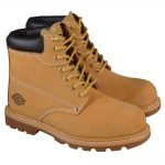 Dickies Cleveland Honey Safety Boot Size 6